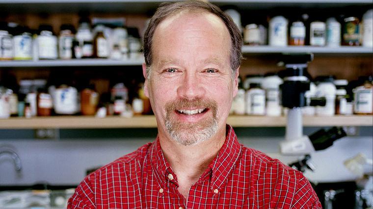 Kenneth Miller | Expert on Evolution, Intelligent Design, and Creationism